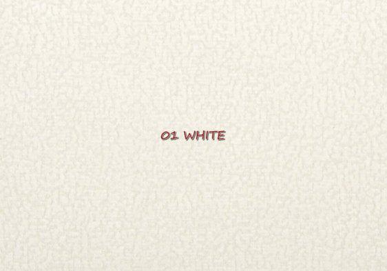 Focus_01_white