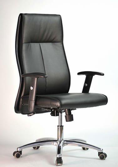 Διευθυντικό κάθισμα εργασίας με ρυθμιζόμενα μπράτσα D-CP5046 R