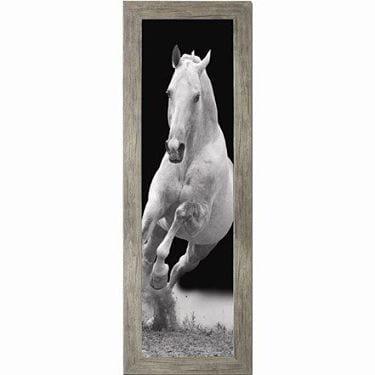 Πίνακας με άσπρο άλογο σε κάδρο 30Χ90εκ. Μ-14724