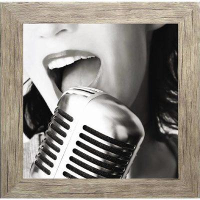 Πίνακας ζωγραφικής  με μικρόφωνο σε κάδρο 35Χ35εκ. Μ-14714