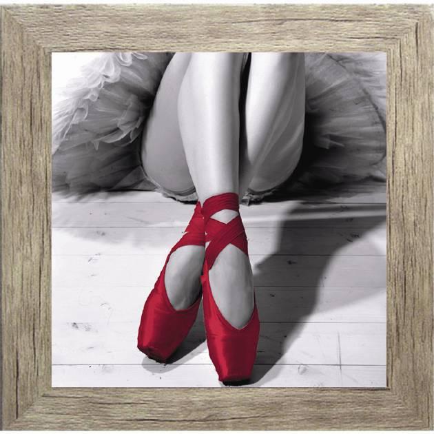 Πίνακας ζωγραφικής  με κόκκινο Pointe σε κάδρο 35Χ35εκ. Μ-14718