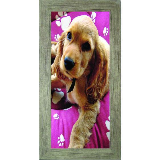Πίνακας ζωγραφικής  με σκύλο σε κάδρο 30Χ60εκ. Μ-14719