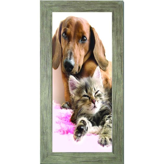 Πίνακας ζωγραφικής  με σκύλος- γάτα σε κάδρο 30Χ60εκ. Μ-14720