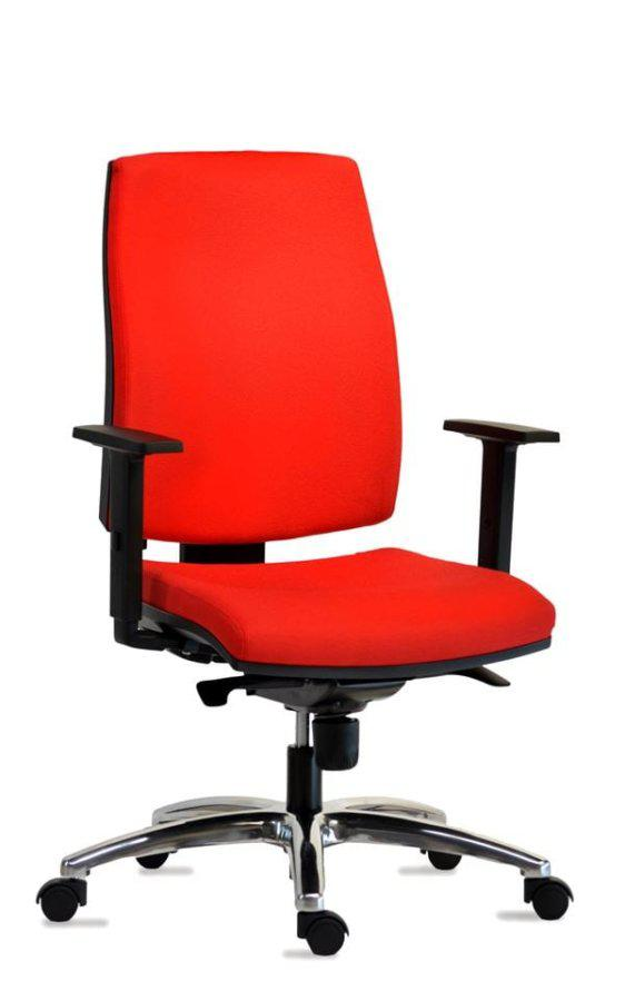Επαγγελματική ανατομική πολυθρόνα γραφείου D-080344