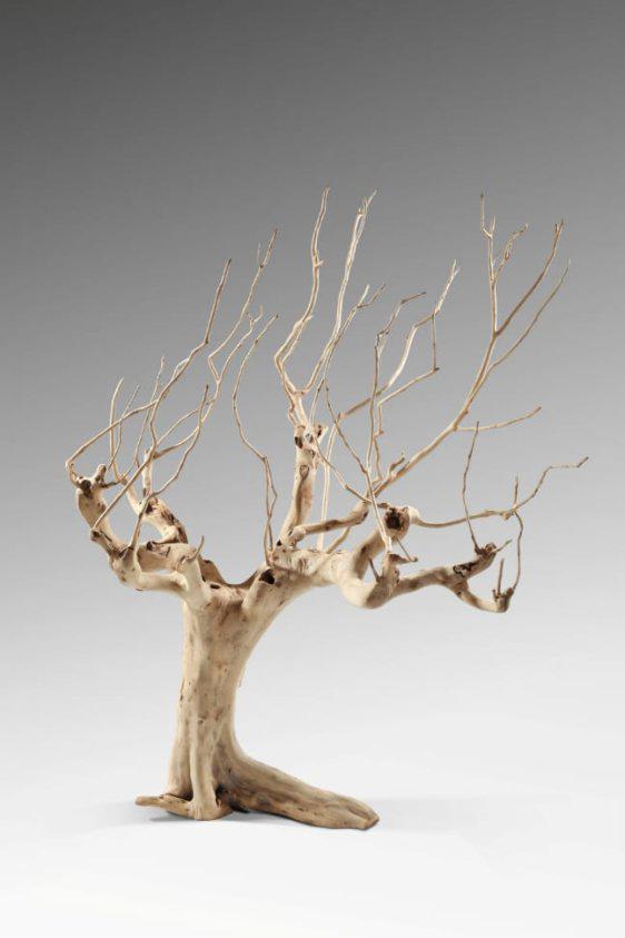 Διακοσμητικό Δεντράκι Από Φυσικό Δέντρο J-146528